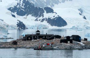 Día de la Antártica Chilena: Territorio austral con exploración e investigación de alcance global